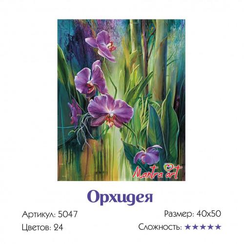 "Набор ""Цветы: Подсолнух + Орхидея + Кампсис + Калла"""